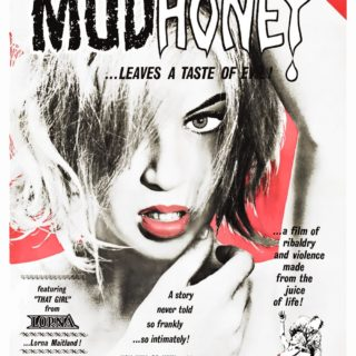 """Poster for the movie """"Mudhoney"""""""